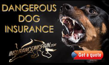 A dangerous Alsation dog with jaws open and salivating advertising dangerous dog liability insurance in Spain
