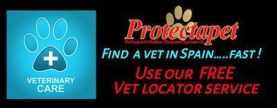 Find a vet in Spain near you