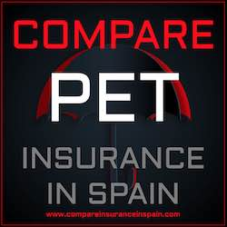 Compare pet insurance in Spain in English