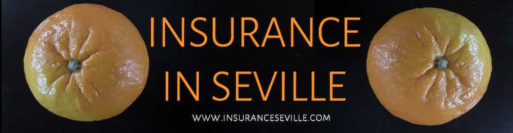 Get-a-quote-for-Insurance-In-Seville-Andalusia-Spain-In-English